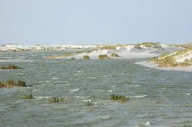 Der Strand von Amrum